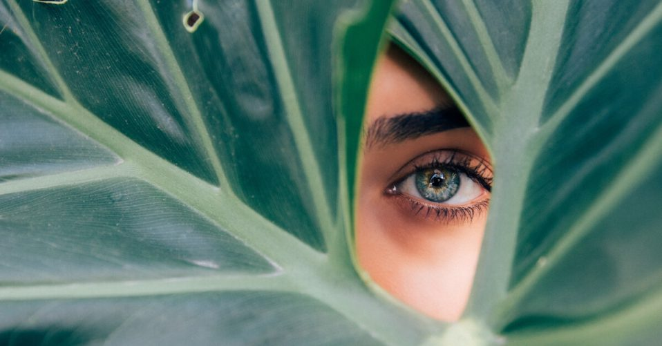 woman's eye peering between leaves