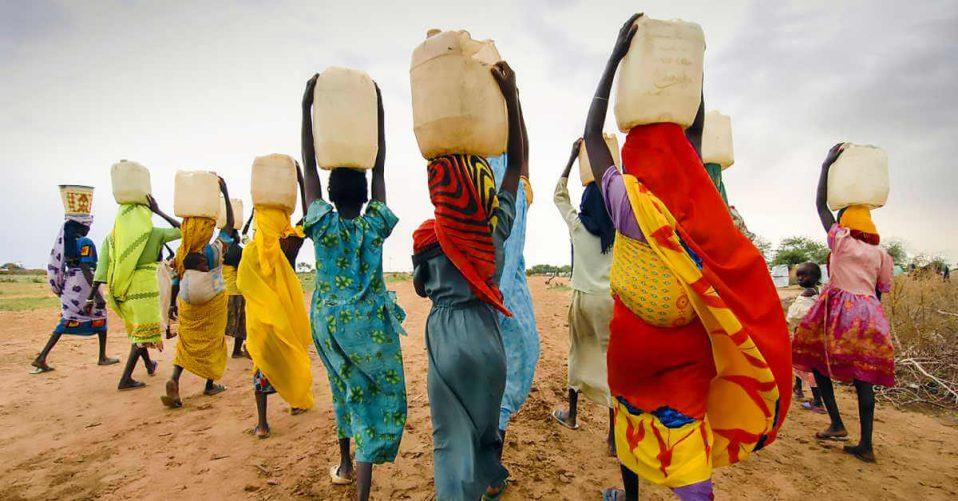 Women harvesting