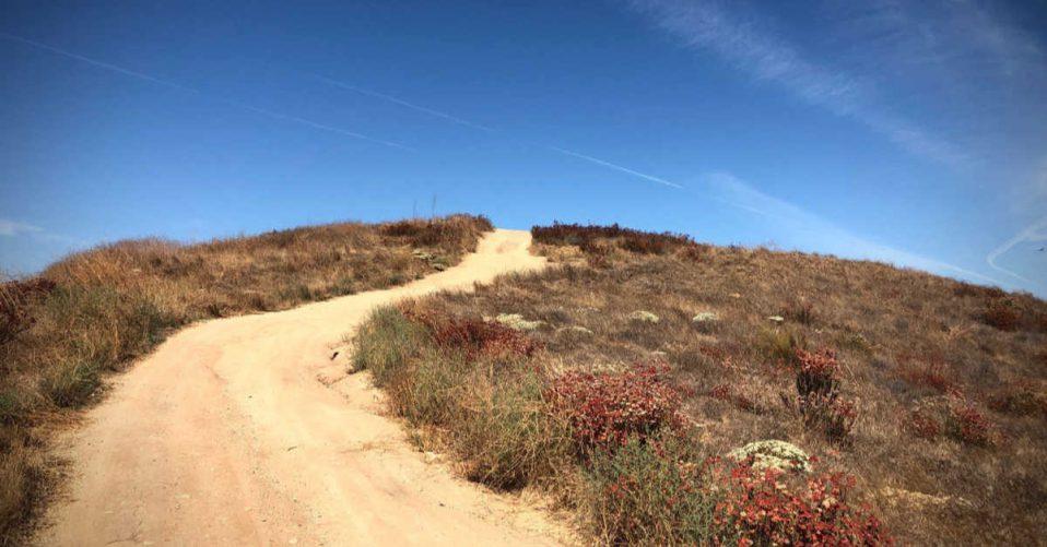 California wilderness walk