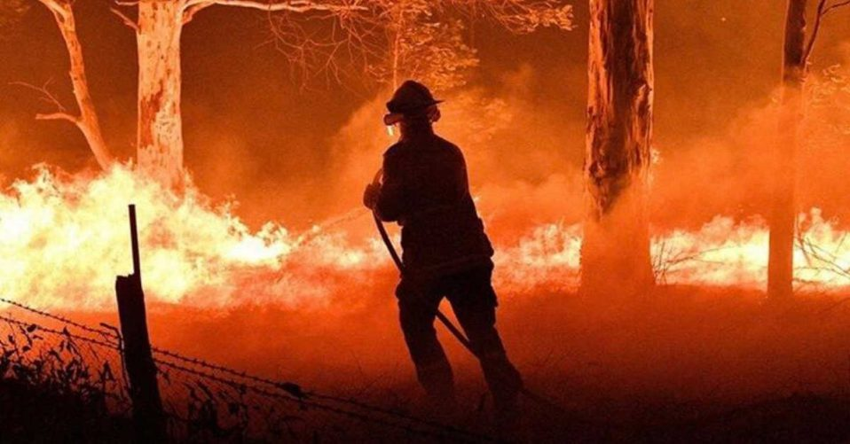 Firefighter fighting bushfire in NSW