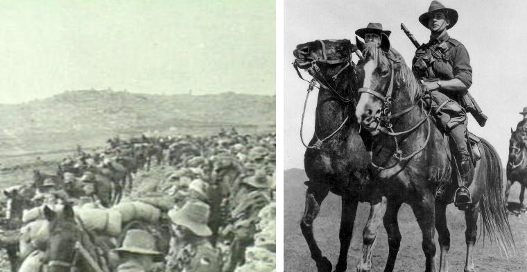 The 3rd Light Horse Regiment and the Australian light horsemen